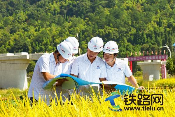 稻谷飘香绘蓝图――22局4公司于泽摄15566086669.jpg